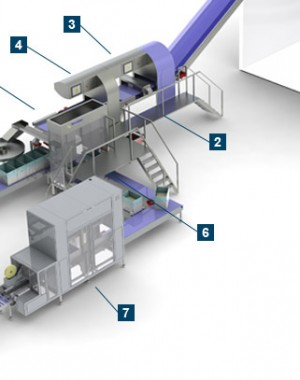 Automated packaging line for bread