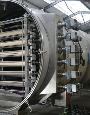 Continuous belt freeze dryer