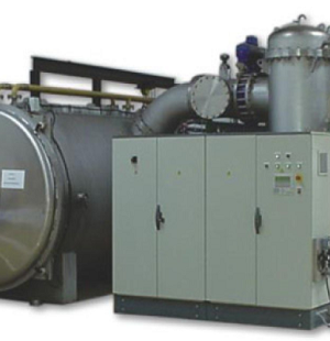 Freeze drying system for berries