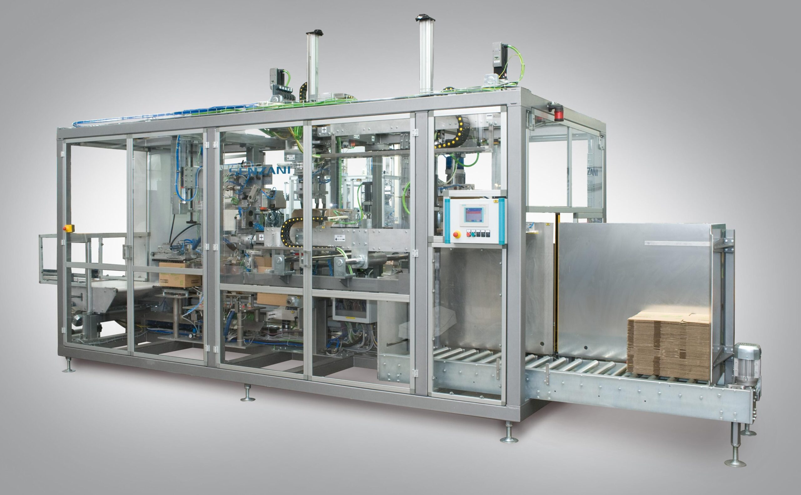 Case packer machine for pouches